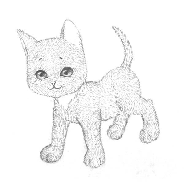 How to draw the Lying Kitten with a pencil step by step 7