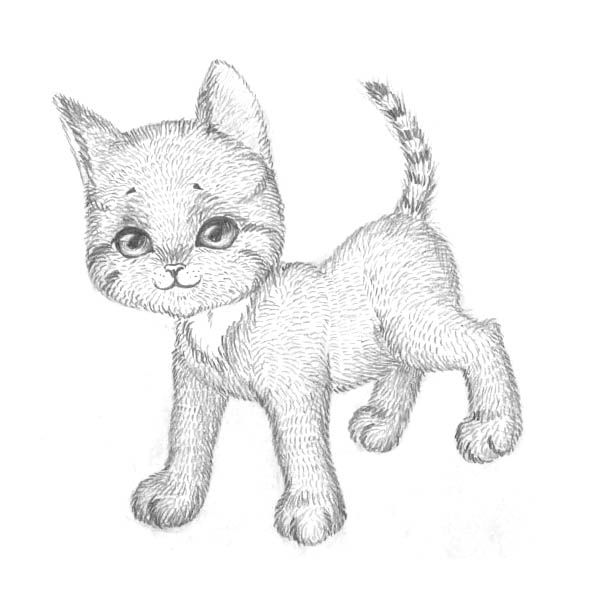 How to draw the Lying Kitten with a pencil step by step 8