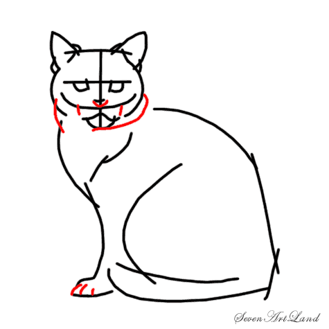 How to draw a Siamese cat step by step 6