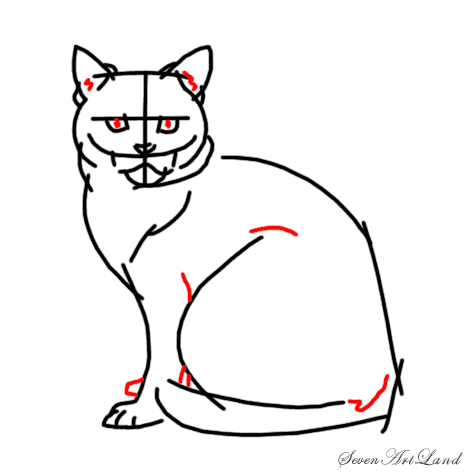 How to draw a Siamese cat step by step 7
