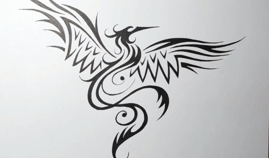 How to draw the Phoenix in style of a tattoo on paper step by step