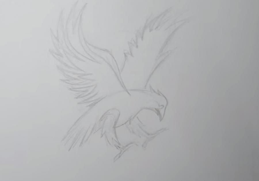 How to learn to draw wings in style of a tattoo step by step 2