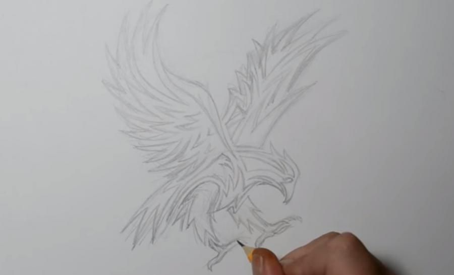 How to learn to draw wings in style of a tattoo step by step 3