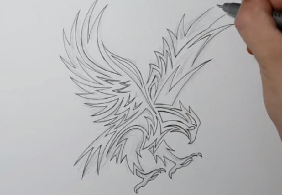 How to learn to draw wings in style of a tattoo step by step 4