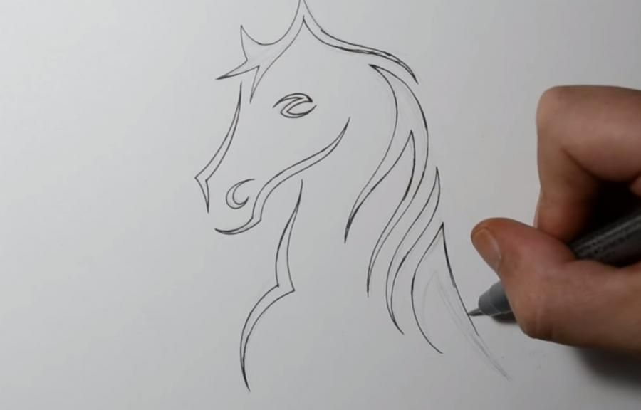 We learn to draw the head of a wolf in style of a tattoo on paper step by step 3