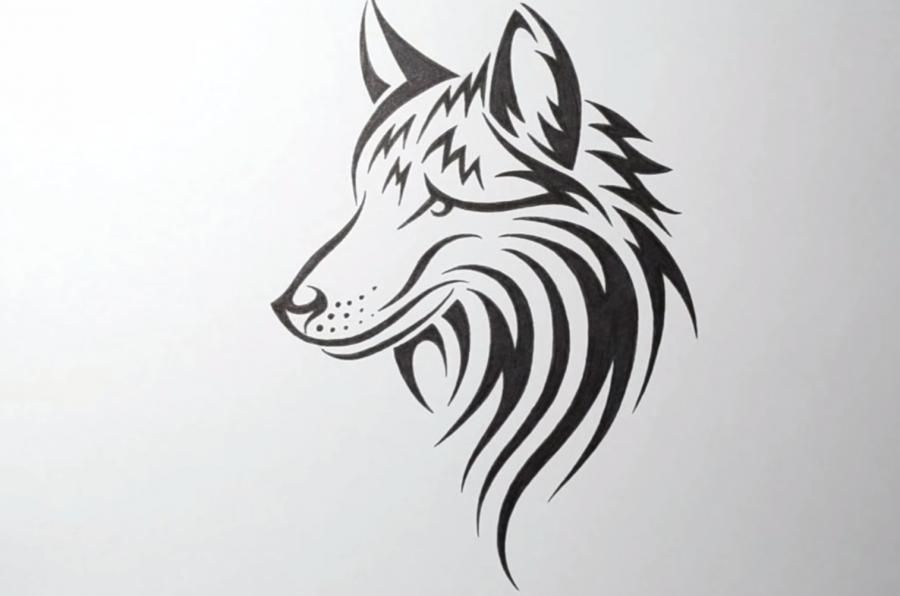 We learn to draw the head of a wolf in style of a tattoo on paper step by step
