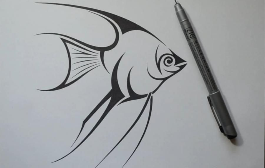 How to draw fish to Skalyary in style of a tattoo on paper step by step