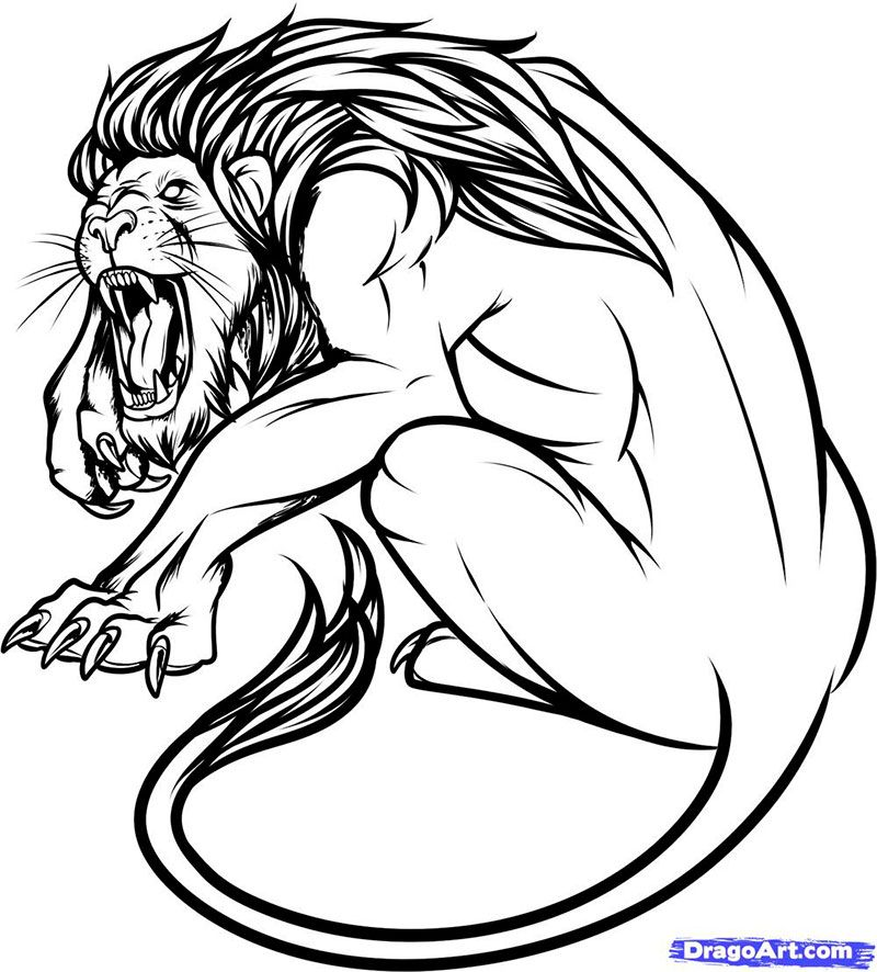 How to draw a lion tattoo with a pencil step by step