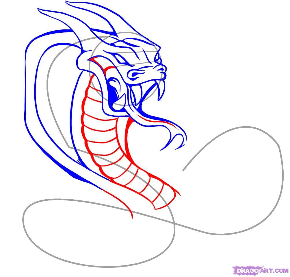 How to draw a tattoo of a scorpion with a pencil on paper step by step 7
