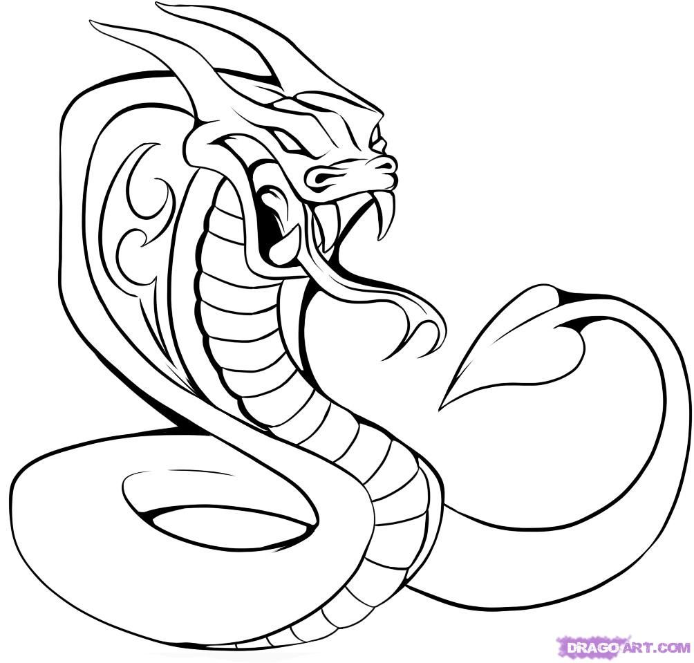 How to draw a cobra tattoo with a pencil step by step