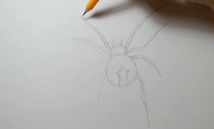 How to draw the head of a great reaper with a pencil step by step 2
