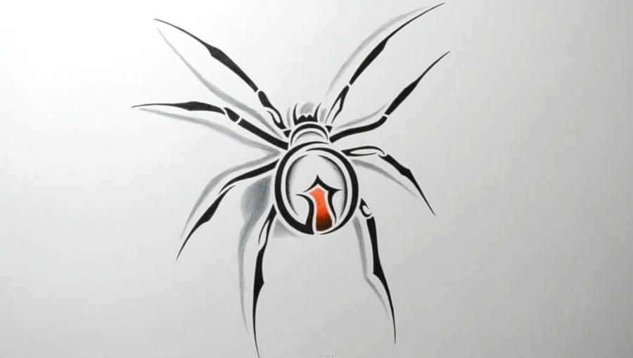 How to draw a tattoo of a spider with a pencil step by step