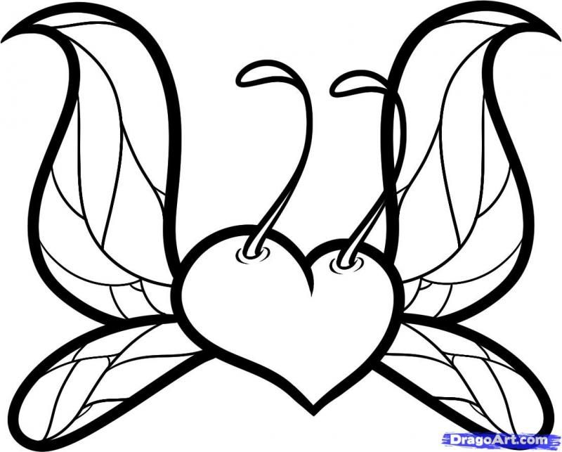 How to draw heart with wings of a butterfly step by step