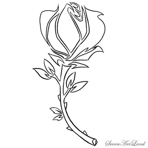 How to draw a rose in style traybl with a pencil step by step