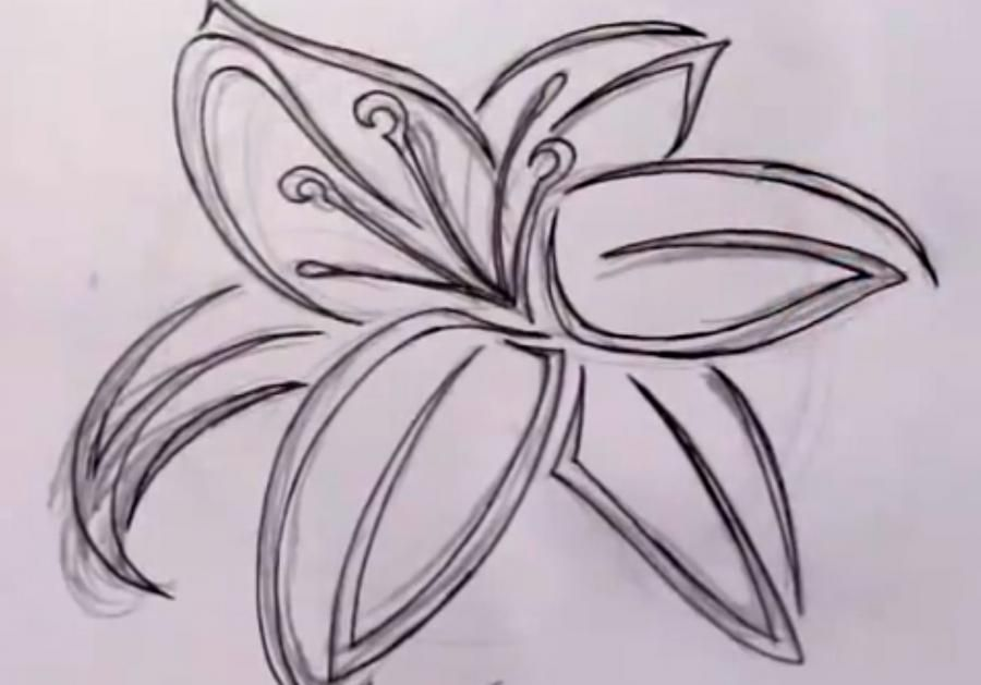How to draw a butterfly in style of a tattoo with a pencil step by step 4