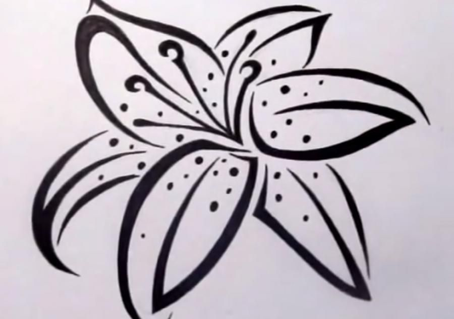 How to draw a lily in style of a tattoo on paper step by step
