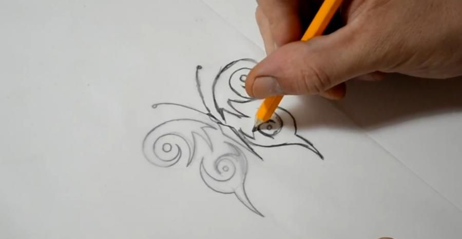 how to draw a butterfly step by step with pencil