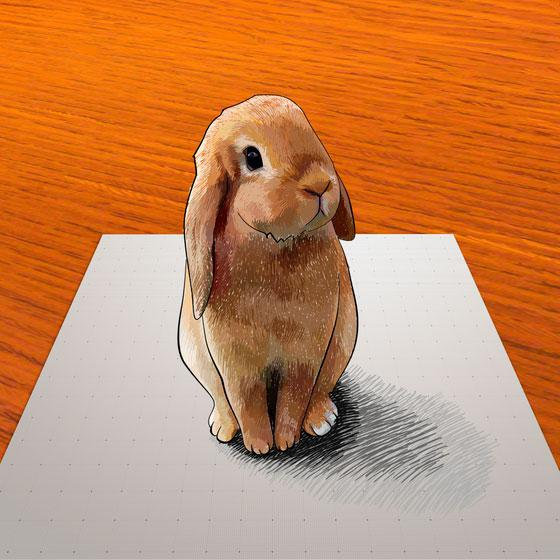 How to learn to draw a 3D rabbit a pencil on paper step by step