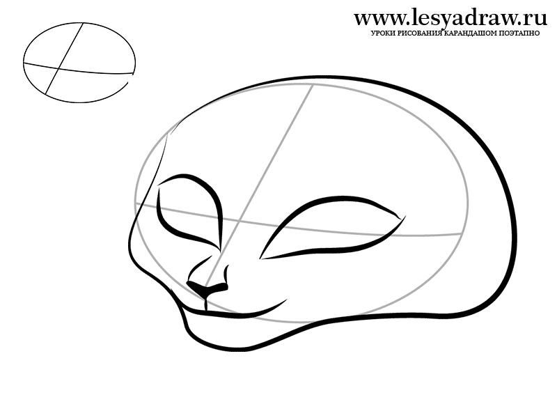 How to draw Gloria from Madagascar with a pencil step by step 2