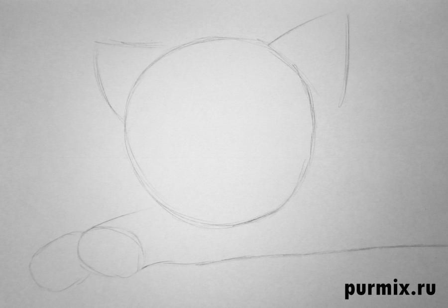 How to draw Tanana from the Brother a bear cub with a pencil step by step 2