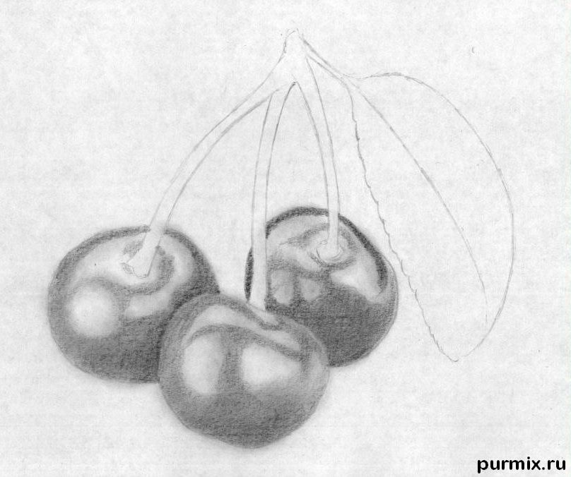 How to learn to draw a water-melon a pencil step by step 5
