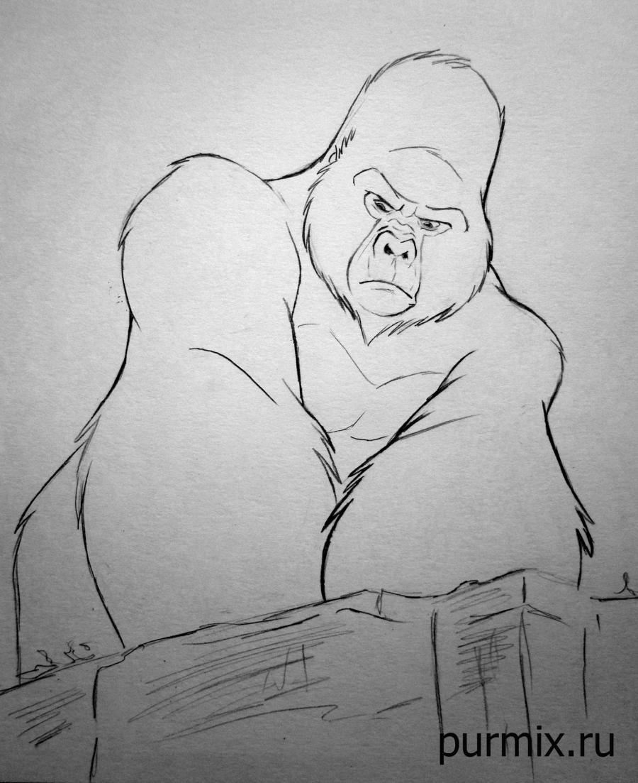 How to draw Kerchak from Tarzan with a simple pencil step by step