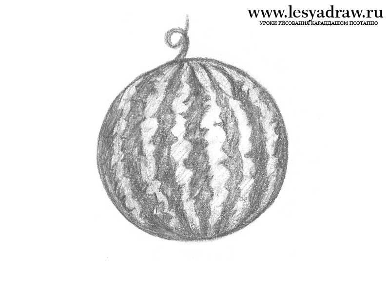 How to learn to draw a water-melon a pencil step by step