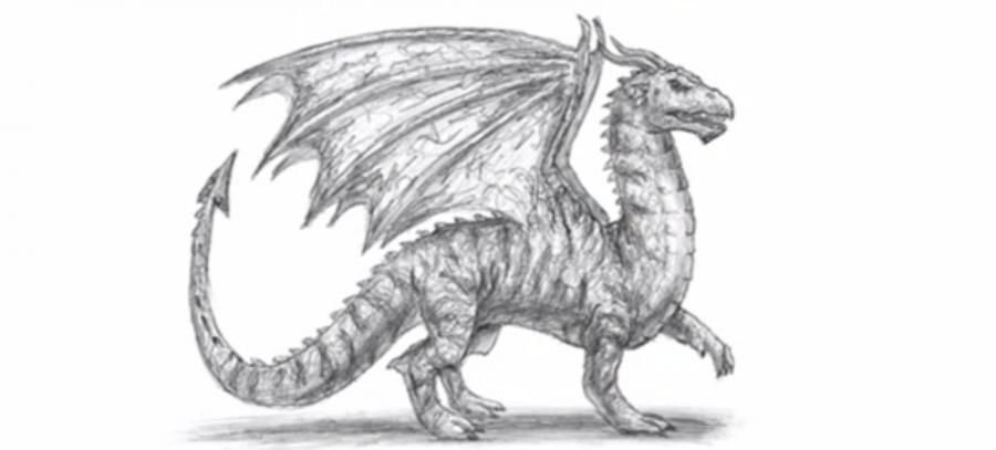 We learn to draw a dragon a simple pencil on paper