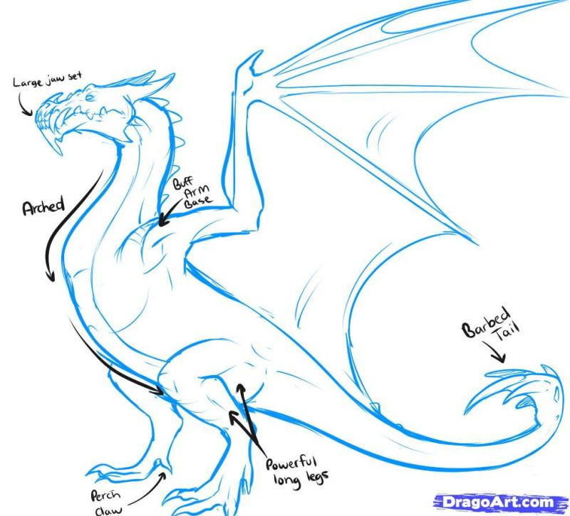 As it is simple to draw the head of a dragon on paper with a pencil 3
