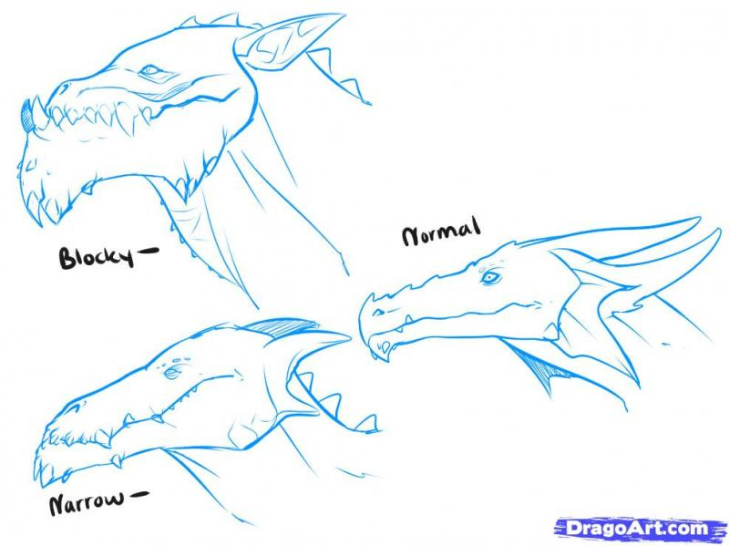 As it is simple to draw the head of a dragon on paper with a pencil 4