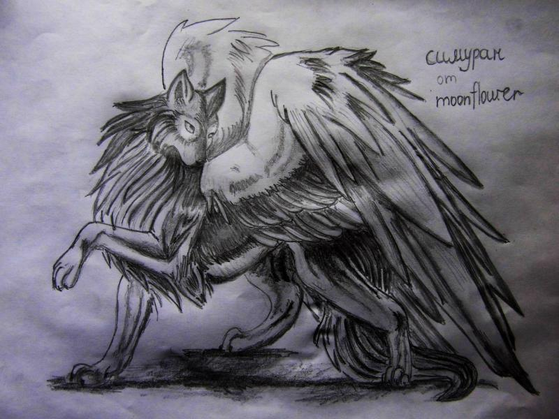 How to draw Simuran, a winged wolf with a pencil