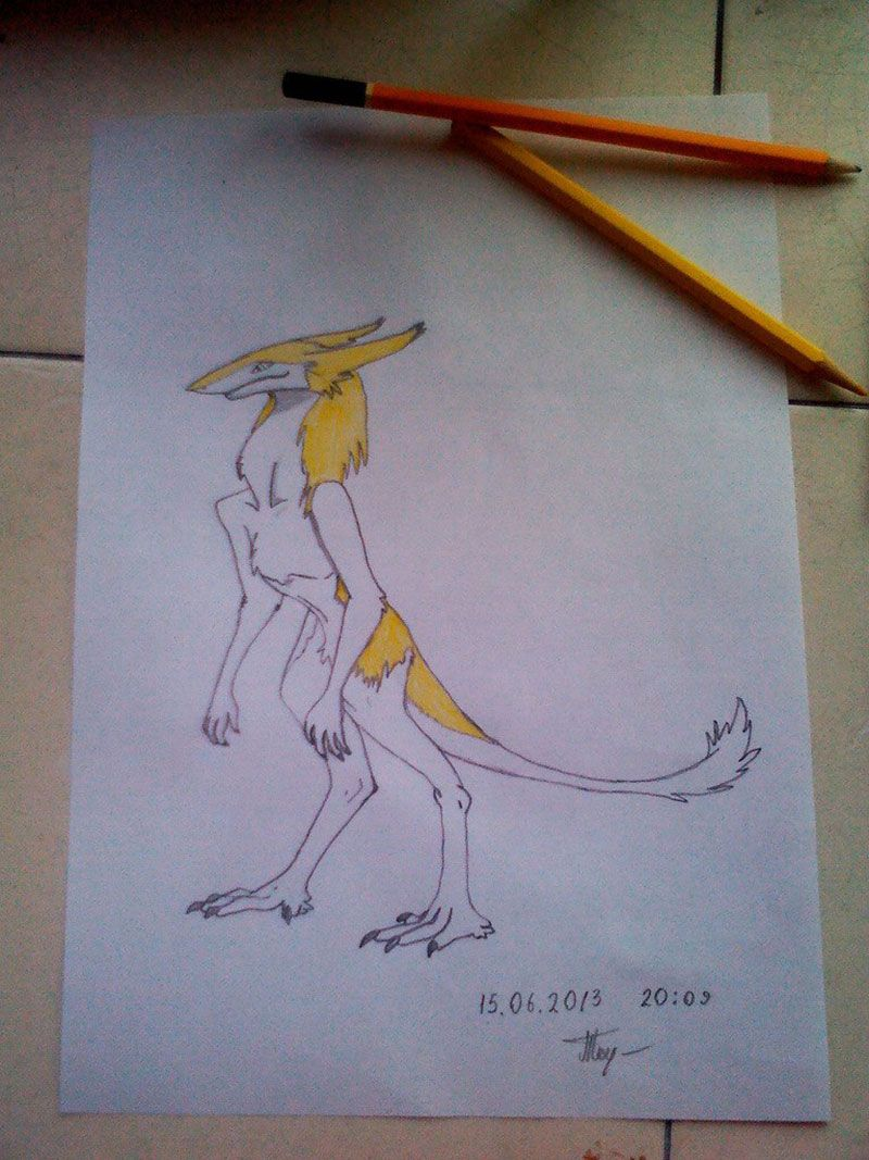 How to draw the southern sergal with a pencil step by step