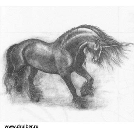How to draw the Unicorn with a pencil step by step