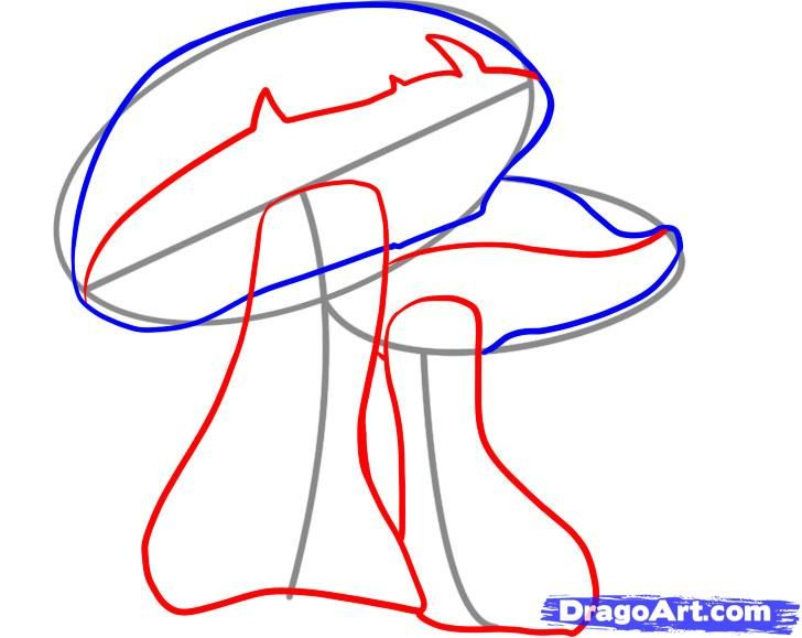 How to draw the Sandwich with a pencil step by step 4