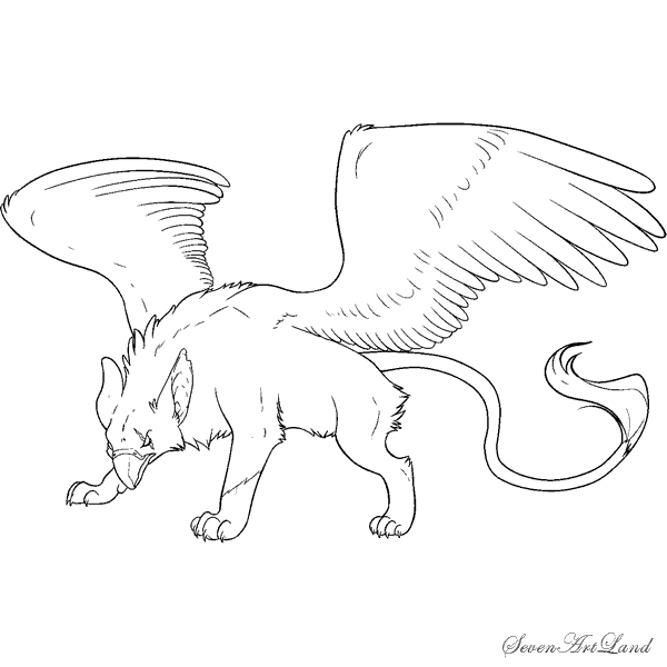 How to draw the Griffin with a pencil step by step