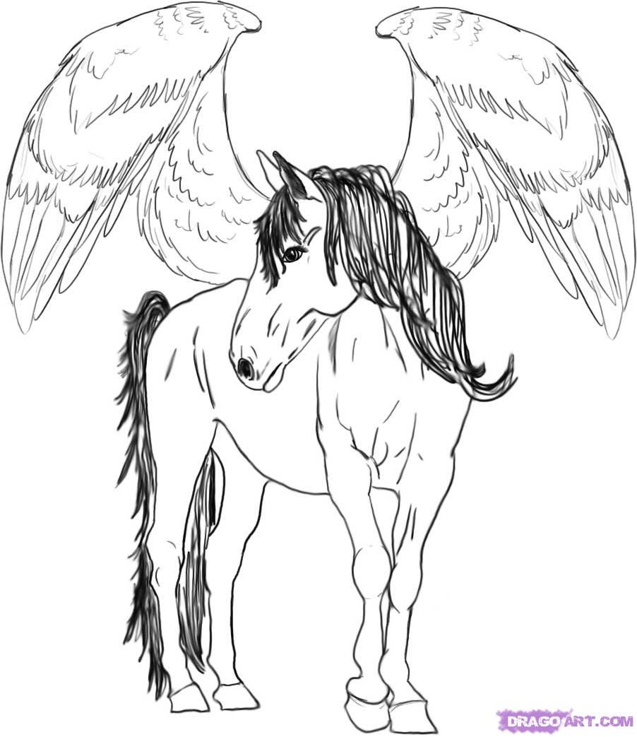 How to draw Pegasus with a pencil step by step