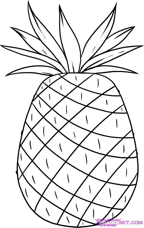 How to draw Pineapple with a pencil step by step