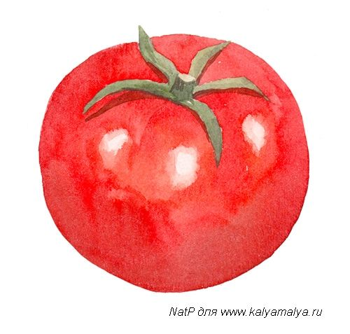 We learn to draw Tomato