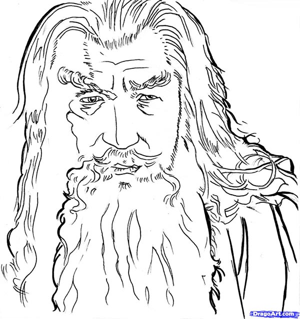 How to draw Gandalf's portrait from the Lord of the Rings with a pencil step by step
